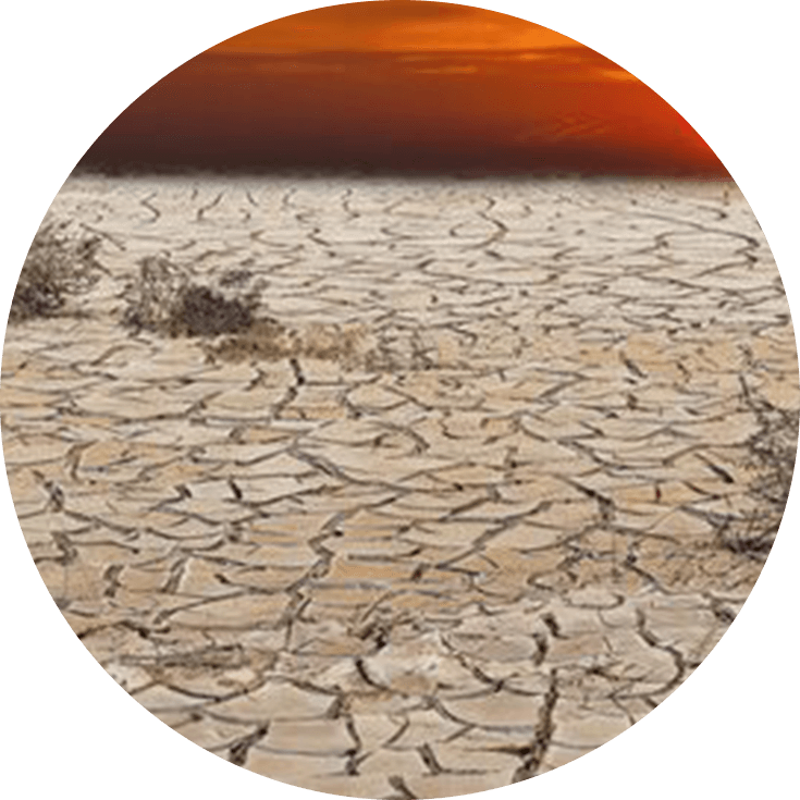 Tyndall Climate Change