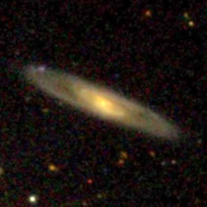The Wonders of the Galaxy Zoo