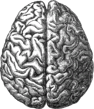 Can Your Brain Keep Up With You?