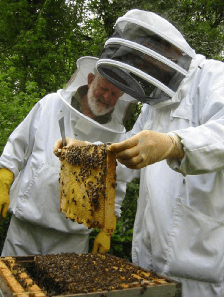 Cheshire Beekeepers Association