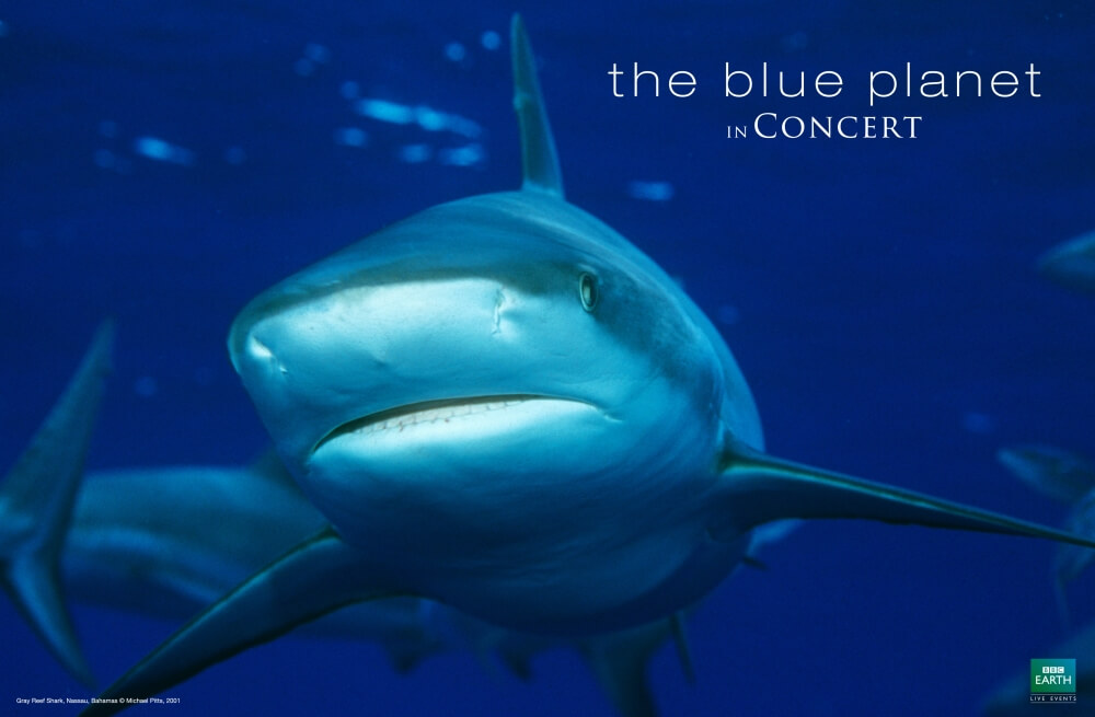 The Blue Planet In Concert with the Hallé Orchestra [Thursday Night Exclusive]