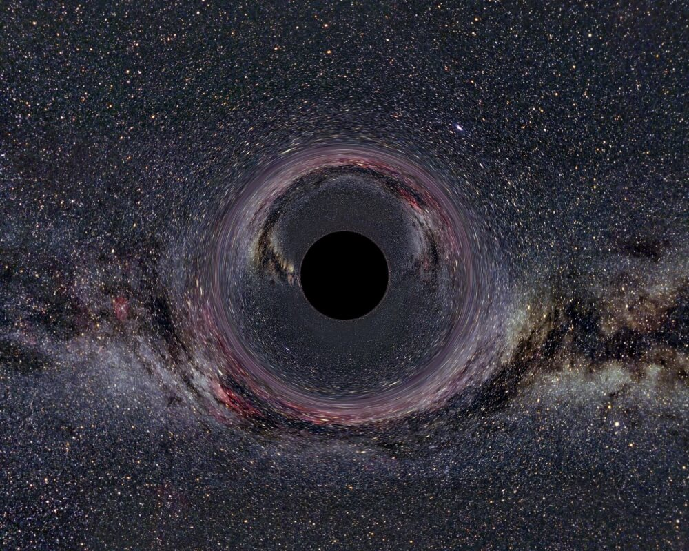 Black Holes Have No Hair