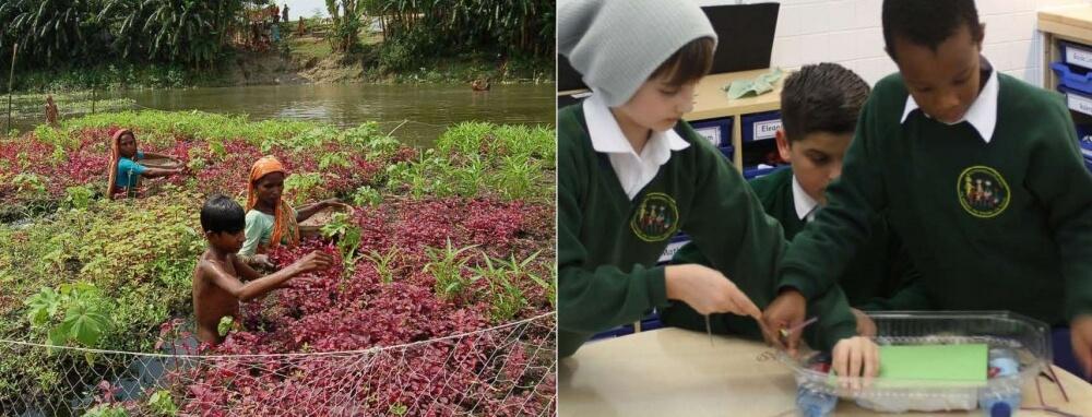 Workshop: The Floating Garden Challenge